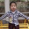 wangyang661